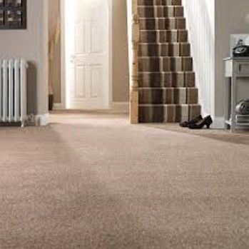Landlord Carpet Flooring